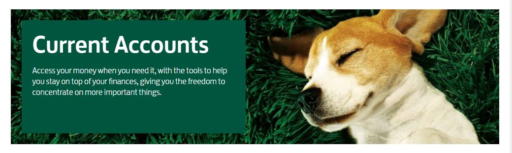 Lloyds Contact Helpline